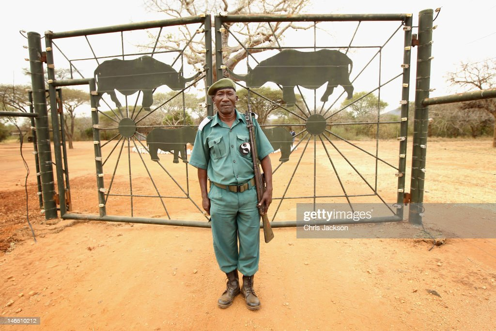 Rhino Ranger Philbert Joseph stands guard outside the electric fences of the Mkomazi Rhino Sanctuary on June 18, 2012 in Mkomazi, Tanzania. The Aspinall Foundation along with the Tusk Trust and the George Adamson Trust are combining forces to stage a rare translocation of three captive born black rhino to Mkomazi National Park in Tanzania in order to rejuvenate numbers of the black rhino in the area. The three animals, Grumeti, Monduli and Zawadi are being airlifted in a dedicated DHL Boeing 757 from Manston Airport in Kent direct to Kilimanjaro Int Airport in Tanzania. The rhino have been donated by Damian Aspinall, Chairman of The Aspinall Foundation, from their breeding group at Port Lympne Wild Animal Park in Kent. The reintroduction of endangered species to the wild to assist breeding programmes is a major focus of The Aspinall Foundation. Prince William, Duke of Cambridge as Patron of Tusk Trust and a dedicated campaigner against poaching visited the rhinos at Port Lympne ahead of their translocation and today released a speech via the BBC highlighting his dedication to the fight against the illegal trade of ivory. (Photo by Chris Jackson/Getty Images).
