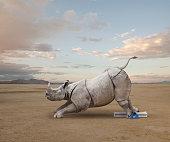Rhinoceros poised in starting block for race
