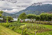 Rhone Alps and garden