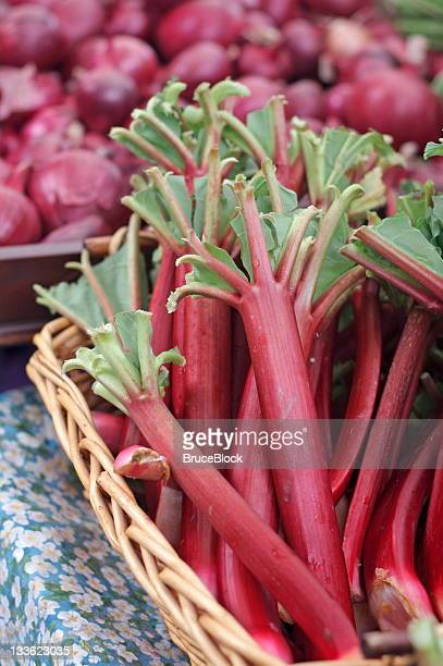 Rhubarb at the farmer's market