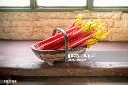 Rhubarb in basket, still life
