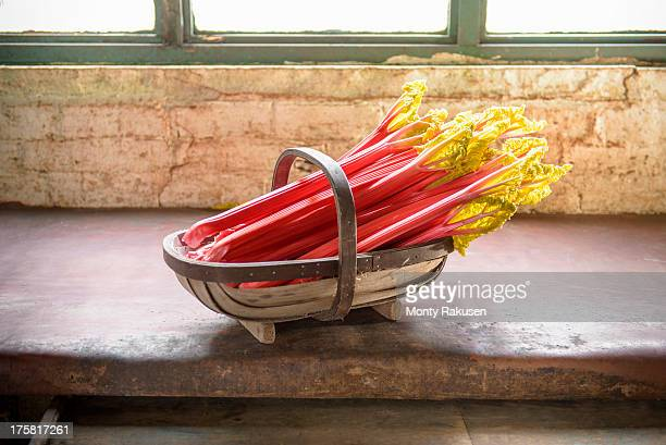 Rhubarb in basket, still life