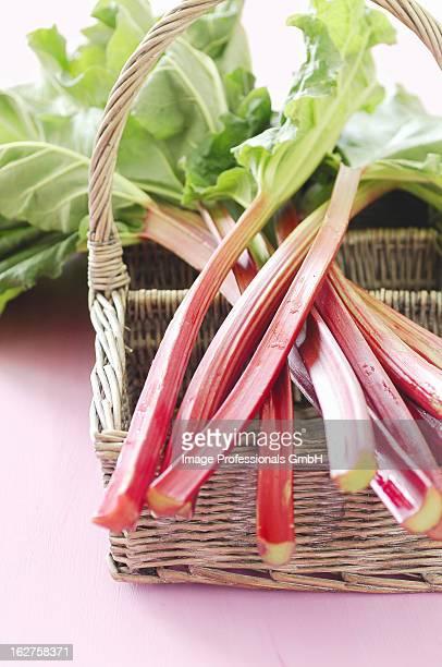 Rhubarb on basket