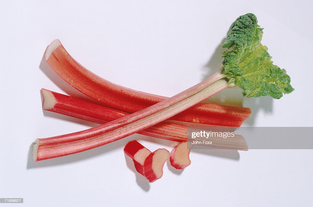 Rhubarb on white background, directly above