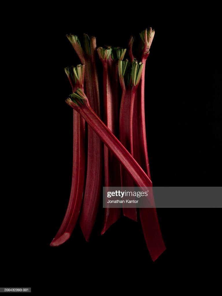 Rhubarb : Stock Photo