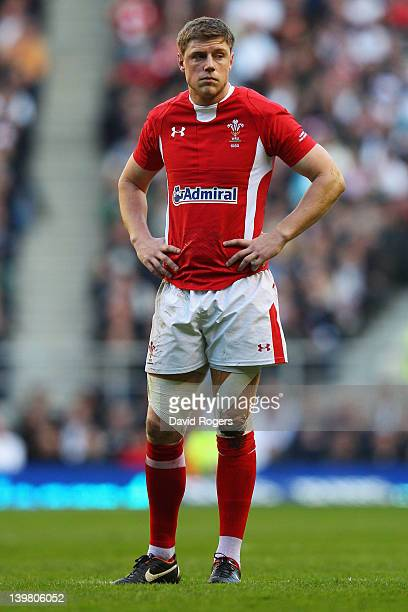 Rhys Priestland of Wales looks on during the RBS 6 Nations match between England and Wales at Twickenham Stadium on February 25 2012 in London England