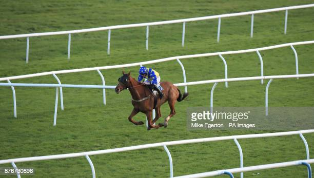 Rhythm of Sound ridden by Jamie Hamilton wins the Castle Conditional Jockeys' Handicap Chase at Leicester Racecourse PRESS ASSOCIATION Photo Picture...