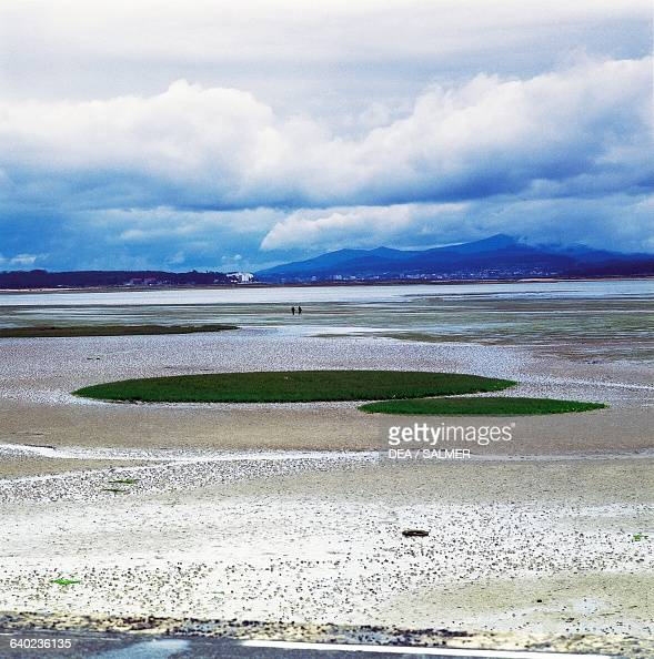 Ria de Arousa estuary Pontevedra Galicia Spain