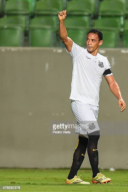 Ricardo Oliveira of Santos celebrates a scored goal against Atletico MG during a match between Atletico MG and Santos as part of Brasileirao Series A...