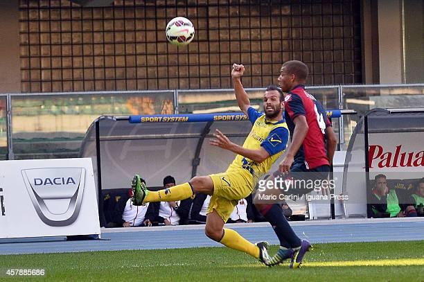 Riccardo Meggiorini of AC Chievo Verona in action during the Serie A match between AC Chievo Verona and Genoa CFC at Stadio Marc'Antonio Bentegodi on...