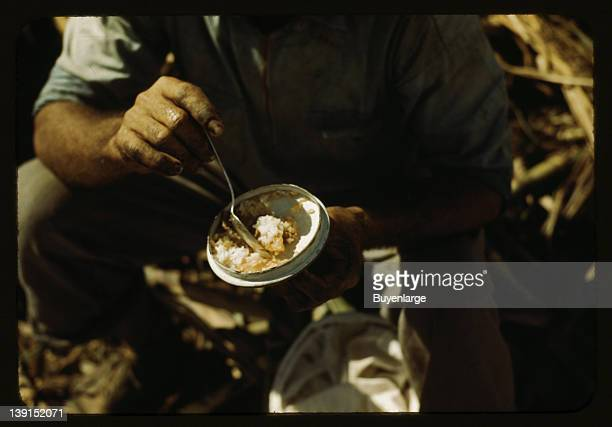 Rice and papaya in the lunch of a sugar worker on a plantation Guernica Puerto Rico 1942