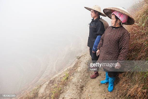 Rice Farmers On Paddy Fields, China