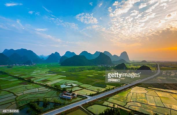 Champs de riz au coucher du soleil, la ville de guilin, Chine