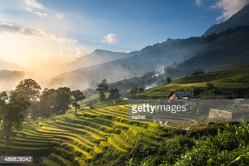 Rice fields on terraced in sunset at SAPA. : Stock Photo