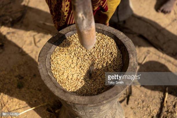 Rice is milled traditionally by pounding