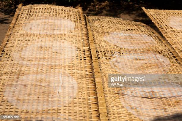 Rice paper circles drying outdoors on a bamboo lattice drying frame Cu Chi Vietnam