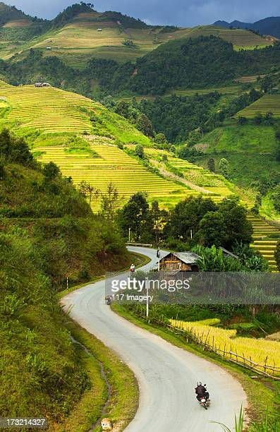 Rice terrace fields in North Vietnam