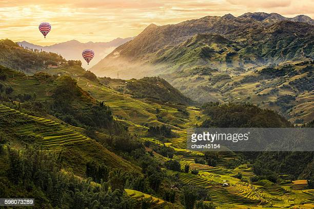 Rice terrace in Asia with balloon