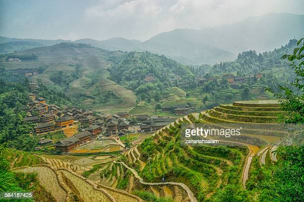Rice terraces and wooden houses, Guilin, China