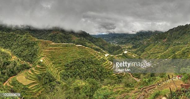 Rice terraces, Banaue, Philippines