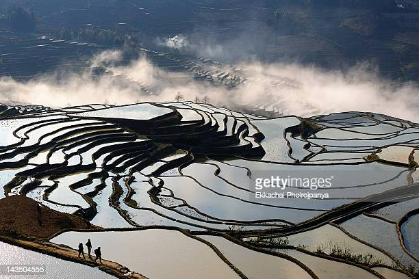 Rice-paddy terracing at Duoyishu