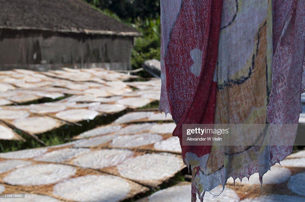 Ricepaper field : Stock Photo