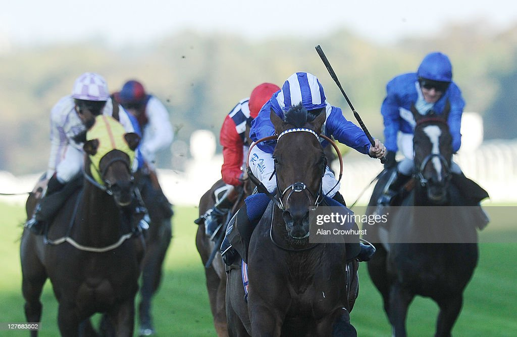 Richard Hills riding Thimaar win the Tabac Gordon Carter Stakes at Ascot racecourse on September 30, 2011 in Ascot, England.