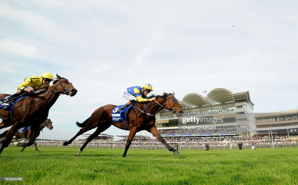 <a gi-track='captionPersonalityLinkClicked' href=/galleries/search?phrase=Richard+Hughes+-+Jockey&family=editorial&specificpeople=206680 ng-click='$event.stopPropagation()'>Richard Hughes</a> rides Chriselliam (R) to win The Shadwell Fillies' Mile at Newmarket racecourse on September 27, 2013 in Newmarket, England.