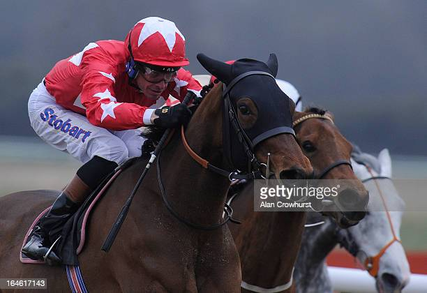 Richard Hughes riding Red Larkspur win The Vines BMW Fillies' Handicap Stakes at Lingfield racecourse on March 25 2013 in Lingfield England