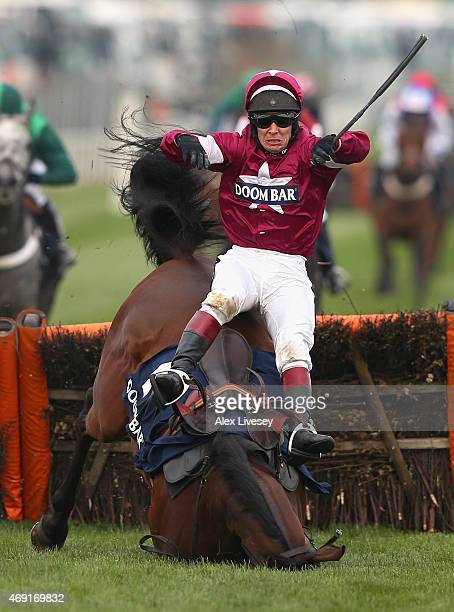 Richard Johnson falls from Alpha Des Obeaux after jumping the last fence during the Doom Bar Sefton Novices' Hurdle Race at Aintree Racecourse on...