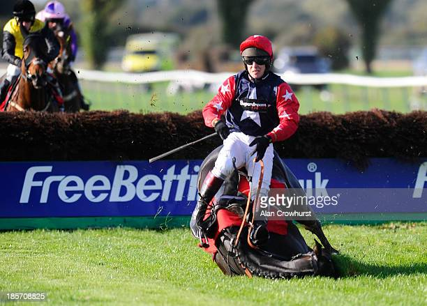 Richard Johnson riding Key To The West fall at the last in The 32Redcom 'National Hunt' Novices' Hurdle Race at Southwell racecourse on October 24...