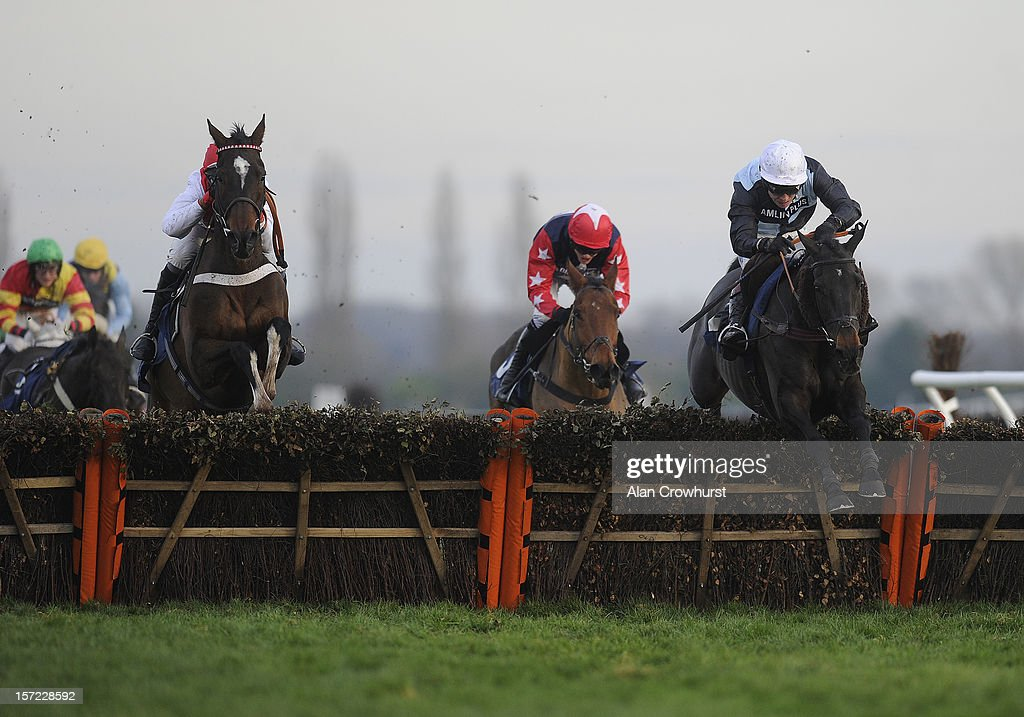 Richard Jonson riding Fair Along clear the last to win The Pertemps Handicap Hurdle Race at Newbury racecourse on November 30, 2012 in Newbury, England.