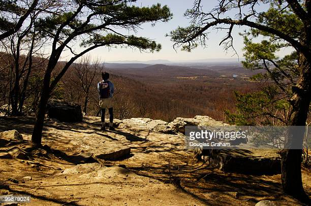 Richard Mach of Silver Spring Maryland enjoys the view out through the deciduous forest from the Appalachian Trail at Route 7 Virginia near Bears Den