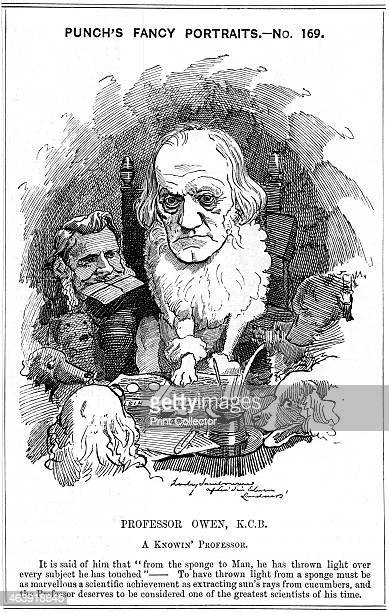 Richard Owen English zoologist 1884 After qualifying and practising as a surgeon Owen made major contributions in the fields of anatomy and...