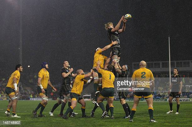 Richie Gray of Scotland takes a lineout ball during the International Test match between the Australian Wallabies and Scotland at Hunter Stadium on...