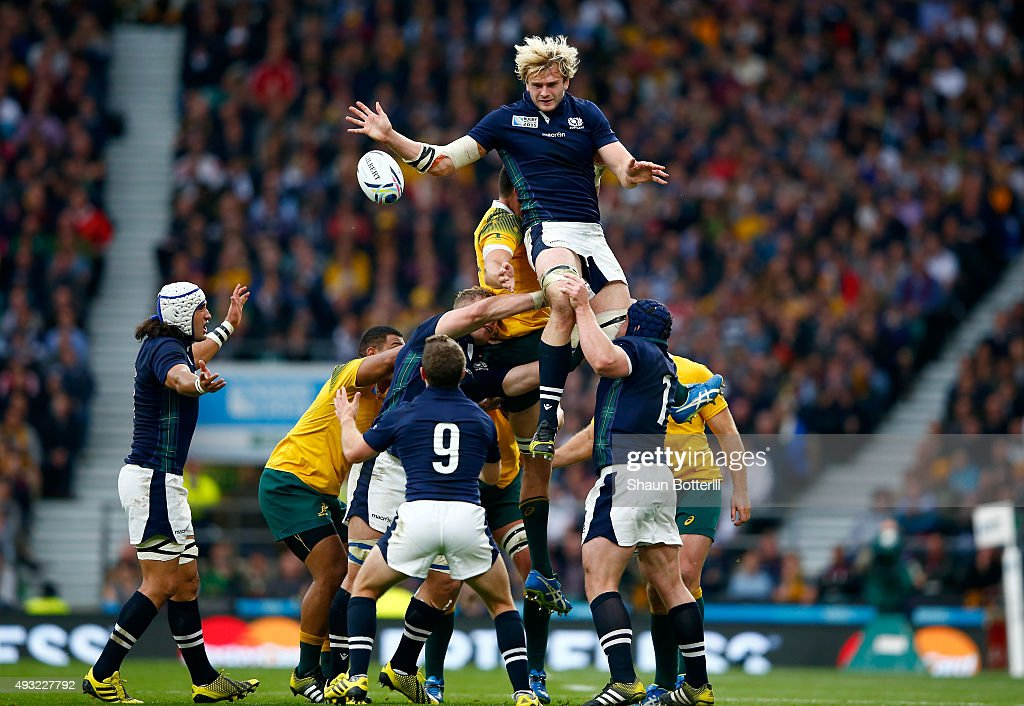 <a gi-track='captionPersonalityLinkClicked' href=/galleries/search?phrase=Richie+Gray+-+Rugby+Player&family=editorial&specificpeople=5907993 ng-click='$event.stopPropagation()'>Richie Gray</a> of Scotland wins the lineout ball during the 2015 Rugby World Cup Quarter Final match between Australia and Scotland at Twickenham Stadium on October 18, 2015 in London, United Kingdom.