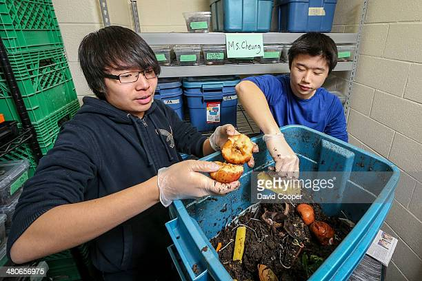 HILL ON MARCH 25 Richmond Hill High School students Dennis Zhu and Haitian Shao prepare a large plastic storage bin for vermicomposting Third layer...