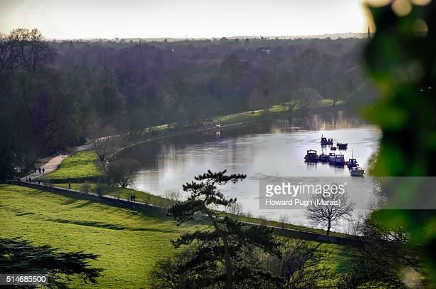 Richmond Park Landscapes