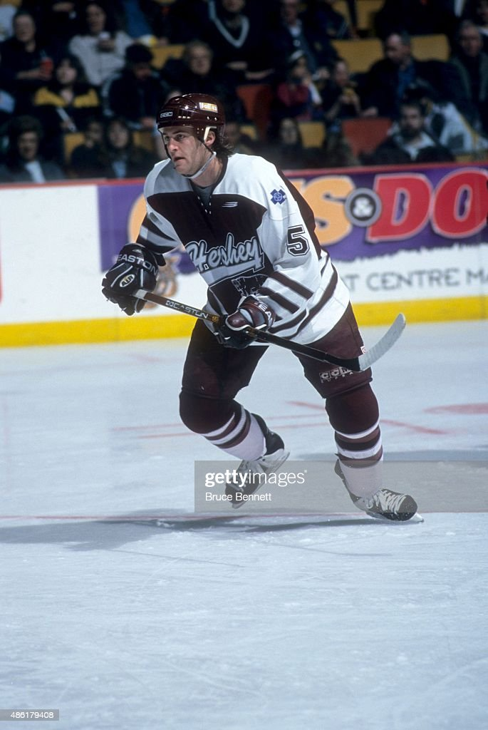 Rick Berry of the Hershey Bears skates on the ice during an AHL game in March 1999