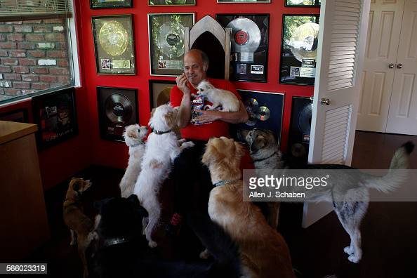 Four Legged Stock Photos And Pictures Getty Images