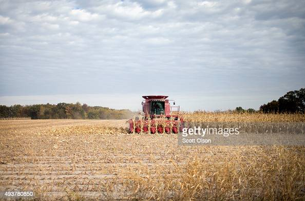 Rick Wirt harvests corn on October 22 2015 near Burlington Iowa Wirt and his daughter Krista Kempker farm more than 2000 acres in th area According...
