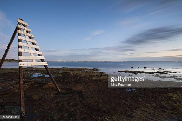 Ricketts Beach