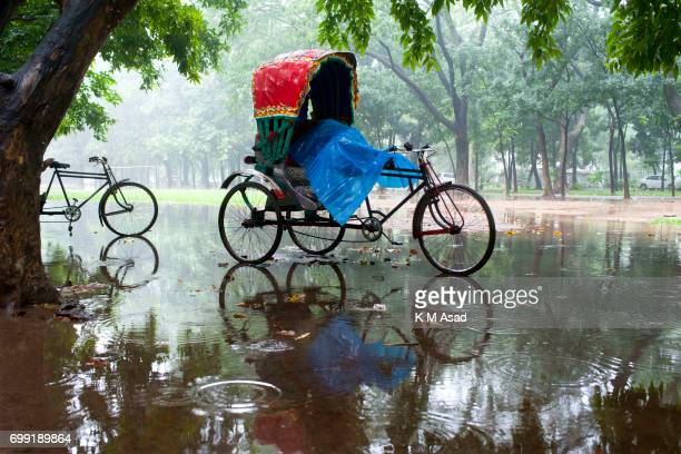 UNIVERCITY DHAKA BANGLADESH Rickshaw pullers take rest when heavy rainfall made in Dhaka city The death toll rises to 156 in several hill districts...