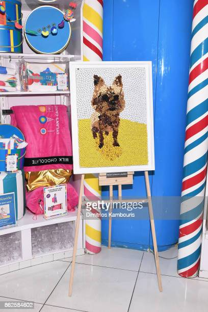 Ricky Lauren and Ralph Lauren's artwork on display as Dylan Lauren celebrates the Sweet 16 of Dylan's Candy Bar on October 17 2017 in New York City