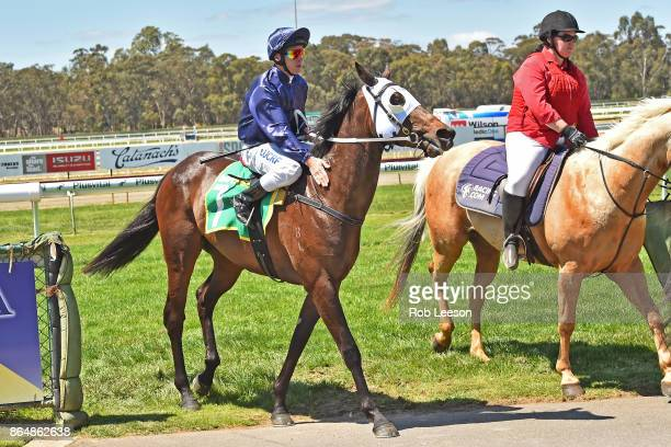 /7/ ridden by /7/ returns to scale after winning the /2/ at Bendigo Racecourse on October 21 2017 in Bendigo Australia