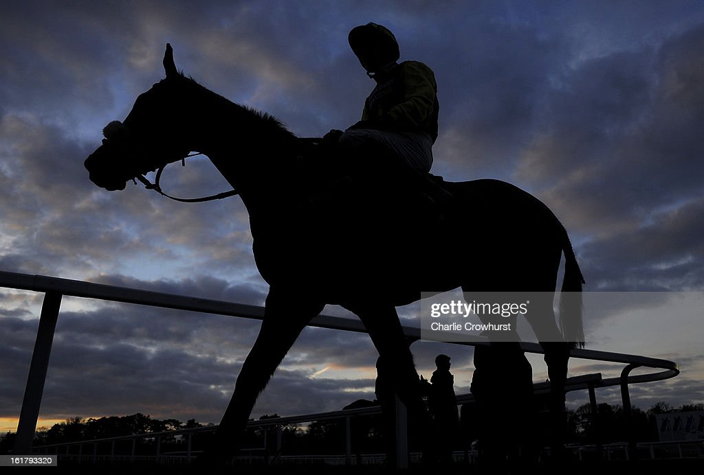 A rider makes his way back to the paddock at Ascot racecourse on February 16, 2013 in Ascot, England.
