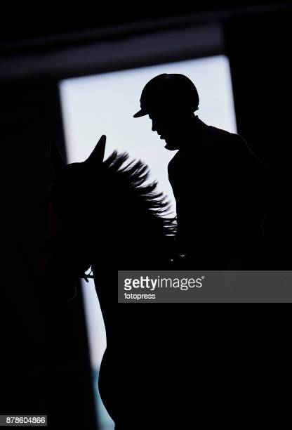 A rider on his horse during the Madrid Horse Week 2017 at IFEMA on November 23 2017 in Madrid Spain