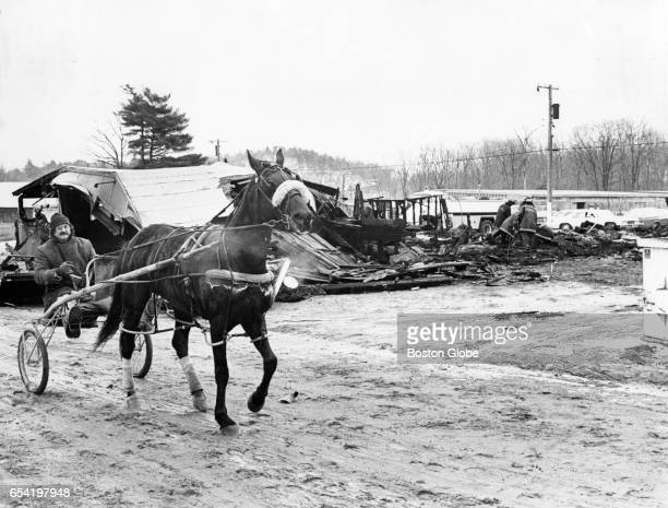 Rider passes the scene where 14 horses burned to death Feb 19 1977 Fourteen harness racing horses trapped in their flaming stables were burned to...
