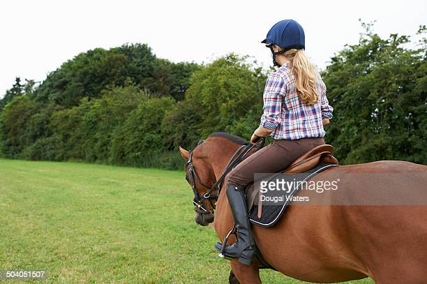 Rider sitting on horse in countryside.