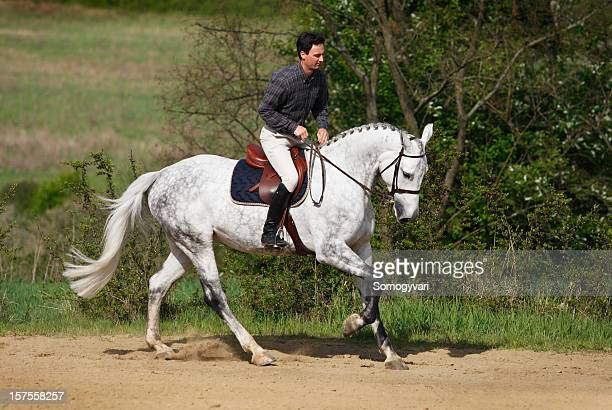 Rider training his horse in gallop